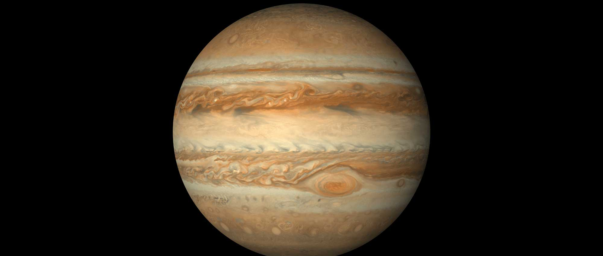 The plant Jupiter on a dark background